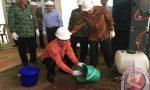 antaranews.com: FMIPA UI Bangun Lab Riset Multidisiplin