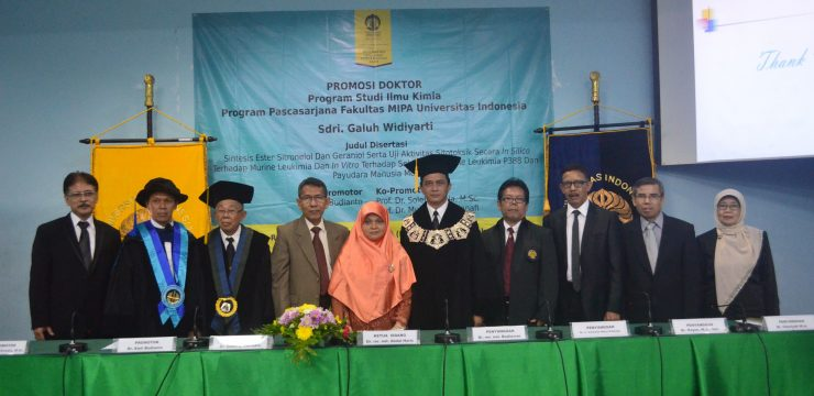 Promosi Doktor Galuh Widiyarti