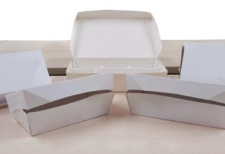 FMIPA UI Lakukan Uji Coba Kemasan Makanan Pengganti Styrofoam Secara Gatis Bagi Para Pedagang kantin