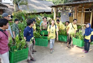 Tim Pengmas FMIPA UI Dorong Warga Desa Sukajadi Peduli Tanaman Bakau