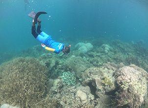 Hari Laut Sedunia : Bagaimana Kondisi Laut Indonesia Selama Masa Pandemi Covid-19?